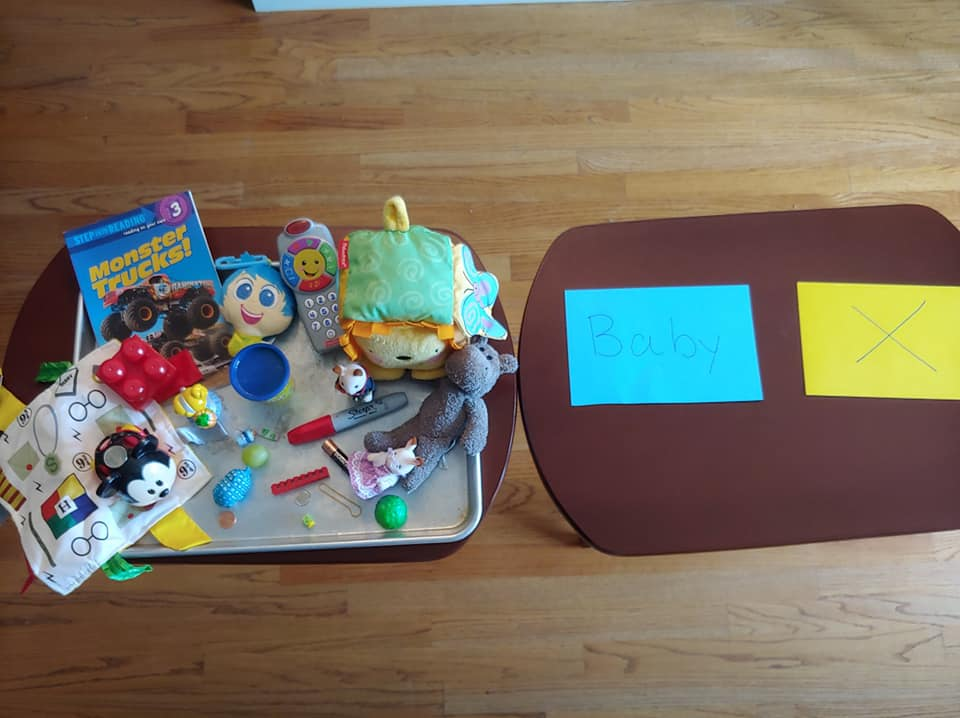safe or not safe new baby activity with items to sort